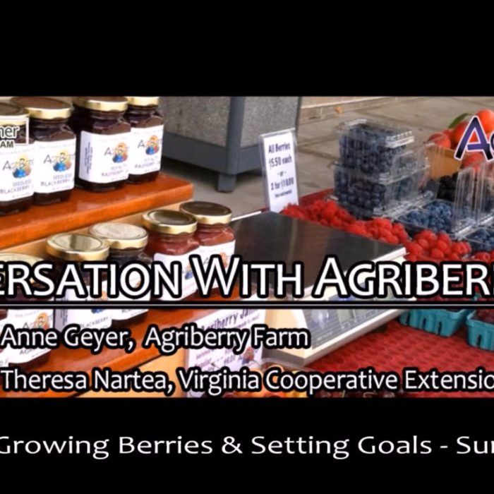 Agriberry Farm